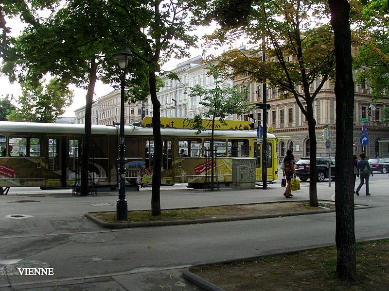 SNB17906
